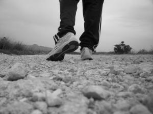 caminante (yo)