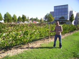 En el Campus de la Universidad Politécnica de Huesca